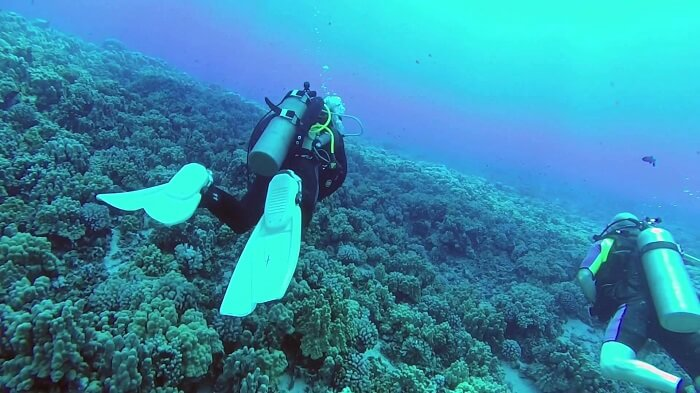 scuba diving at Molokini Crater, one of the most fun things to do in Maui