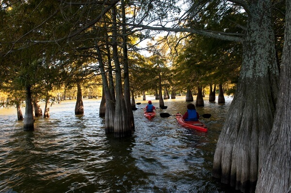 Chicot State Park on Arkansas's largest natural lake