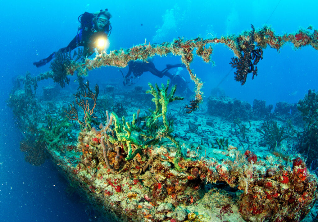 KEY LARGO, FL - MAY 16:  In this handout photo provided by the Florida Keys News Bureau, Annette Robertson explores a portion of the artificial reef  Spiegel Grove on May 16 2012, in the Florida Keys National Marine Sanctuary, off Key Largo, Florida. Thursday, May 17, marks the 10th anniversary of the former 510-foot, U.S. Navy landing ship dock's scuttling to become an artificial reef. The Spiegel Grove gained international attention May 17, 2002, when it sank prematurely and rolled over leaving its upside-down bow protruding above the sea. Three weeks later salvagers sank it fully on its side and in July 2005, Hurricane Dennis helped to set it upright.  (Photo by Stephen Frink/Florida Keys News Bureau via Getty Images)