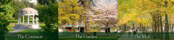 Boston Public Gardens - best things to see in Boston