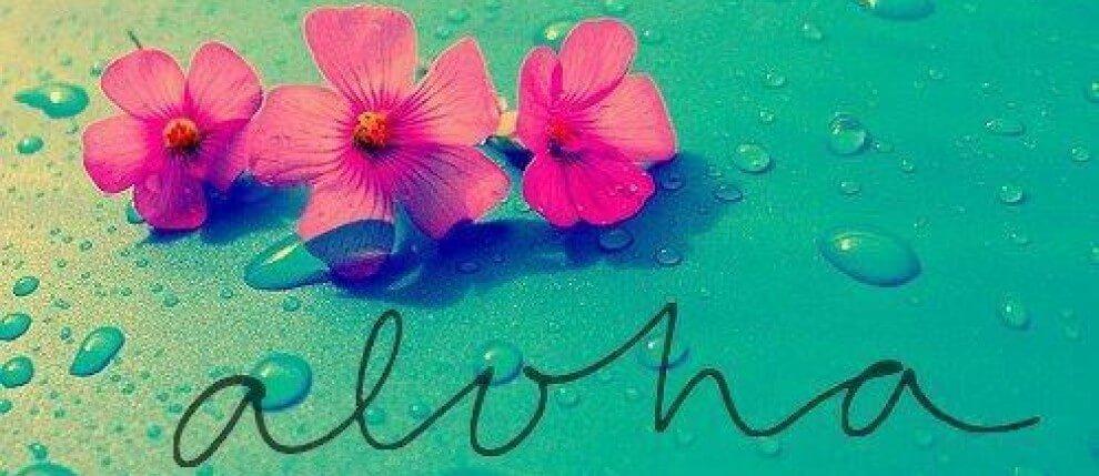 Aloha from Pahoa Hawaii