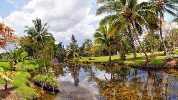 Buenavista Biosphere Reserve Cayo Santa Maria Cuba Caribbean