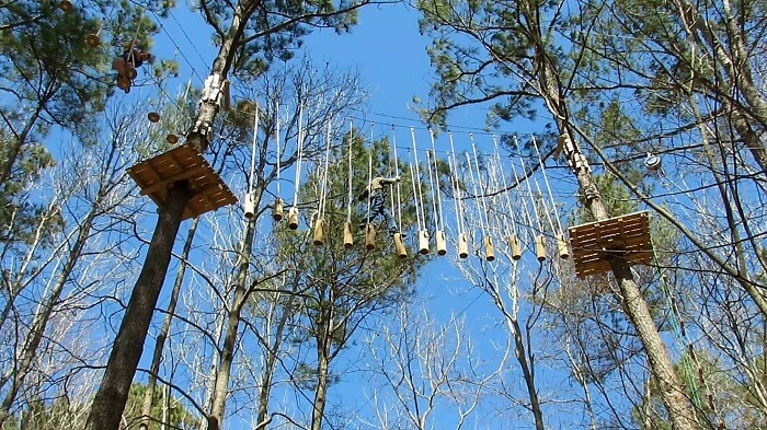Adventure Park, one of the best tourist attractions in Virginia