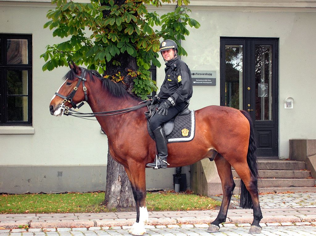 Norwegian mounted police